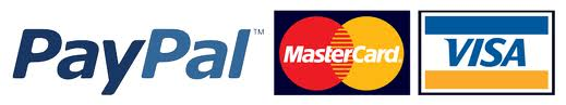 Paypal Logo 5